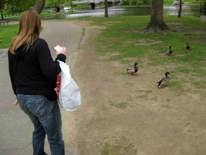 Lauren being chased by ducks at Boston Gardens