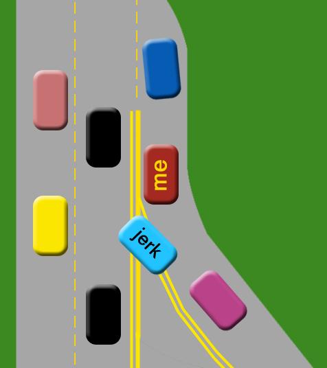 Idiot Drivers