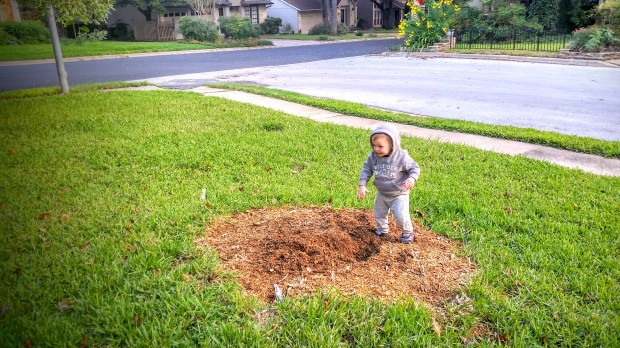 BEFORE: This is what our front yard looked like for months and months. How hard would it be to fill that back in?
